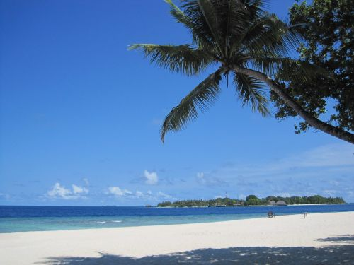 bandos maldives beach