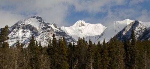 Banfo nacionalinis parkas,Alberta,kalnai,Kanada,nacionalinis,parkas,kelionė,Kanados,kraštovaizdis,lauke,vaizdingas,banff,gamta,uolingas,miškas
