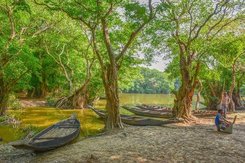 bangladesh  landscape  nature