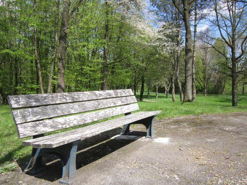 bankas,medinis stendas,pavasaris,gamta,stendas,poilsis,poilsio vieta,taikus,pertrauka,saulėtas