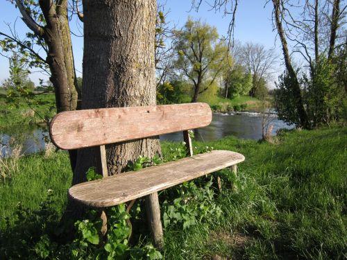 bankas,stendas,medinis stendas,sėdynė,poilsis,pertrauka,tylus,gamta,pavasaris,romantiškas,mediena