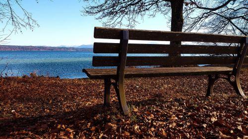 bank autumn lake
