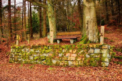 bank wooden bench sandstones