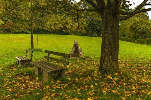 bank autumn resting place