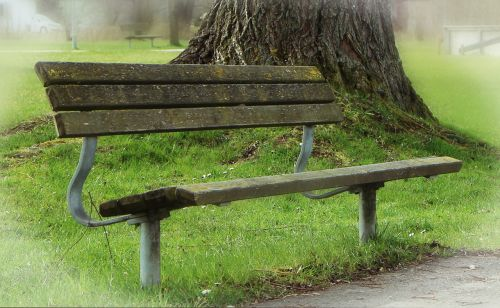 bank seat park bench