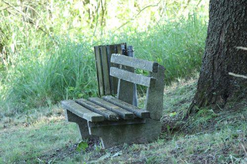 bankas,stendas,gamta,medžiai,žalias,out,sėdėti,poilsis,medinis stendas,poilsio vieta,tylus