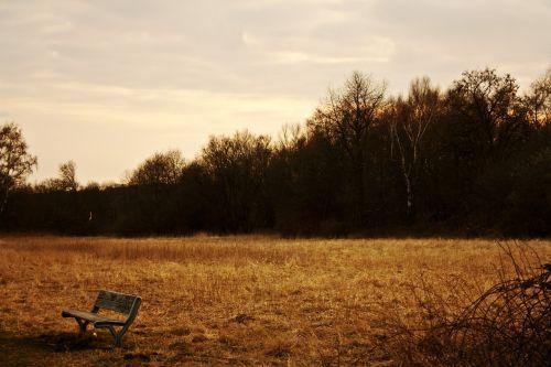 bankas,vakaras,poilsis,tylus,saulėlydis,abendstimmung,gamta,kraštovaizdis,vakare,twilight,poilsio vieta,sėdynė,stendas