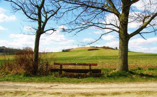 bankas, medinis stendas, stendas, gamta, out, spustelėkite, sėdynė, poilsis, mediena, medis, sėdėti, tylus