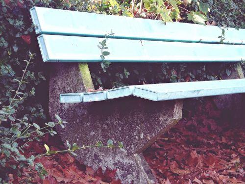 bank rest sit