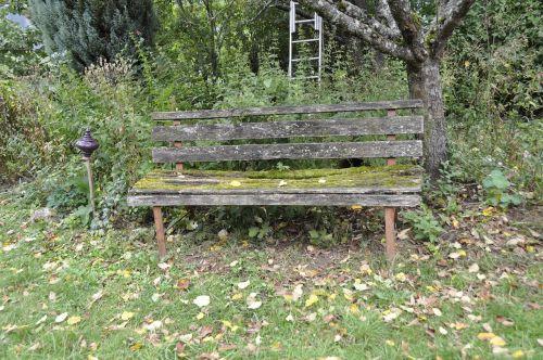 bank garden nature