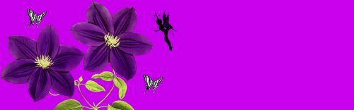 banner header flower