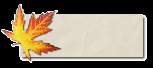 banner autumn leaf