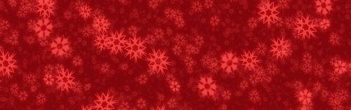 banner header snow