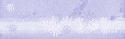 Banner Web Romantic Lilac Flower