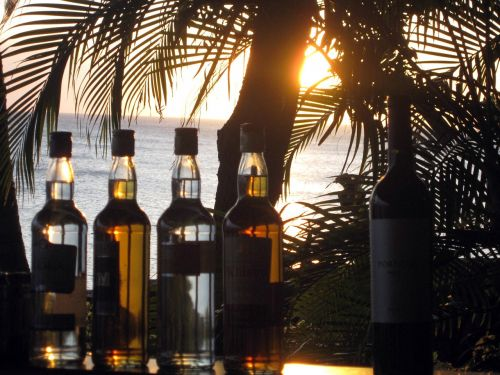 baras,buteliai,saulėlydis,gėrimai,alkoholis,nuotaika,gėrimai,palmės