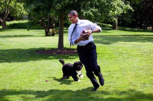 barack obama and bo 2009 play