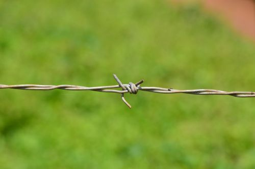 barb wire barbed