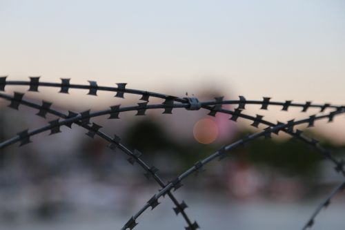 barb wire fence barbed wire