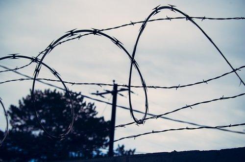 barb wire  razor wire  prison