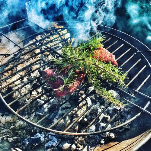 barbecue rosemary food
