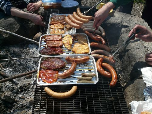 barbecue fireplace meat