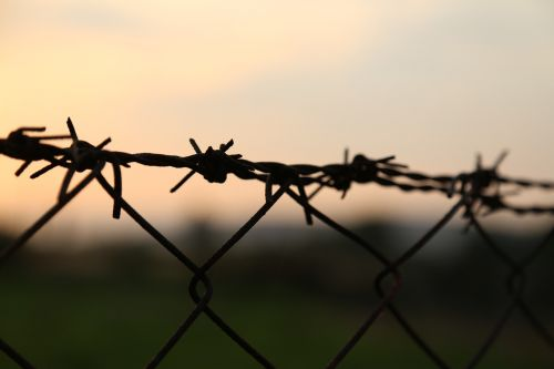 barbed wire sunset wire