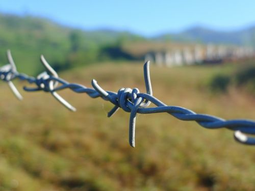 barbed wire fence border