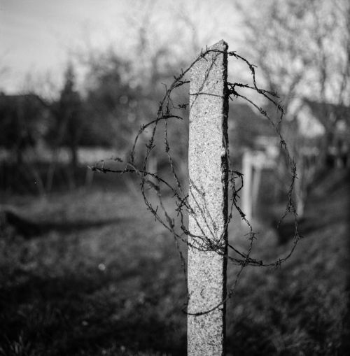 barbed wire concrete black and white