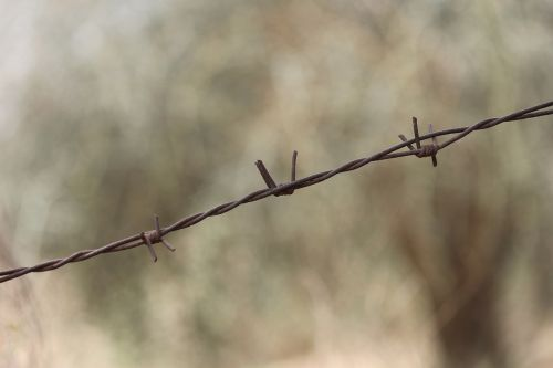 barbed wire wire barb wire