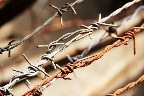 barbed wire sting wire
