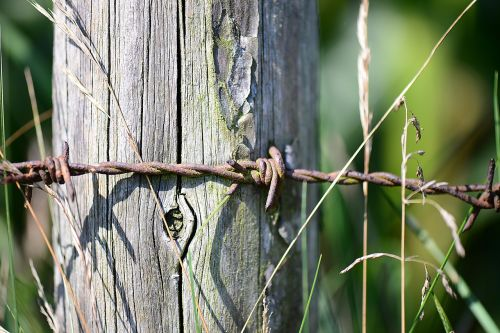 barbed wire rusty post