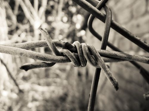 barbed wire twisted sharp