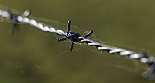 barbed wire fencing caution