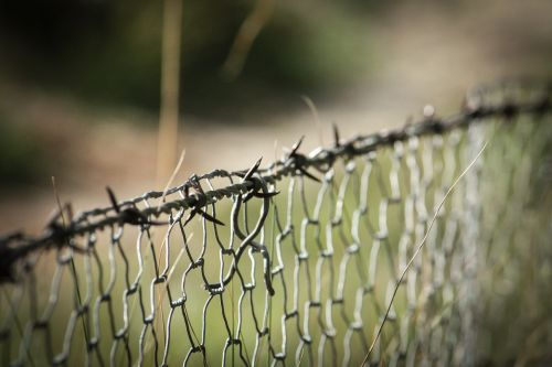 barbed wire fence wire mesh