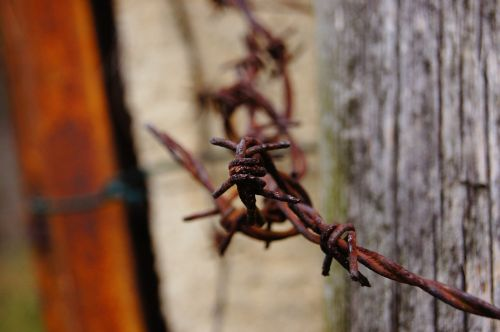 barbed wire verrostst fence