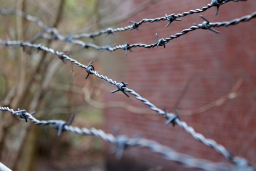 barbed wire security wire