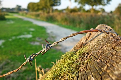 barbed wire wire steel