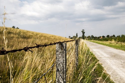 barbed wire  away  meadow