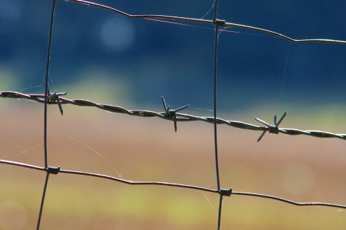 barbed wire wiring security
