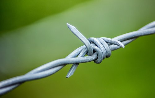 barbed wire  barb wire  wire