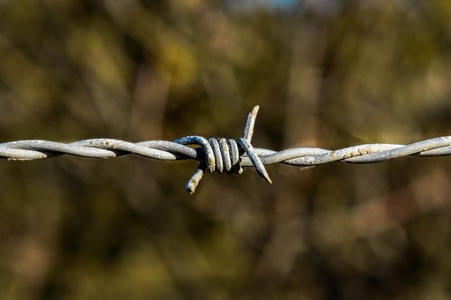 barbed wire  metal  thread