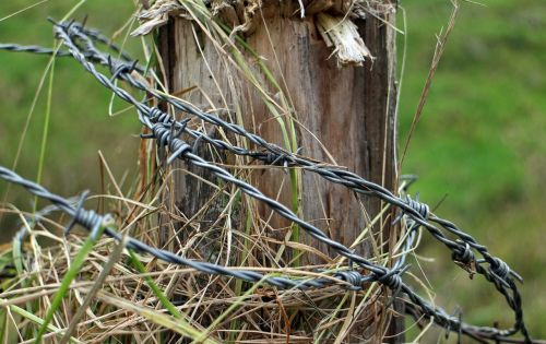 barbed wire post fence
