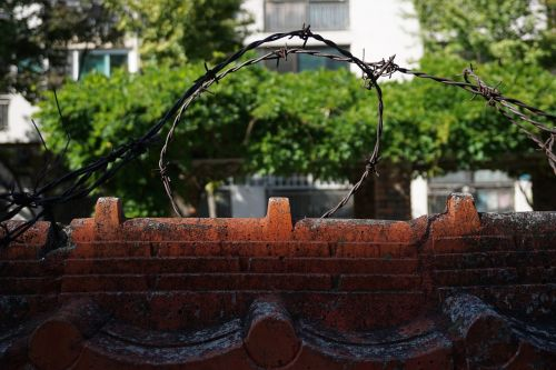 barbed wire damme wall