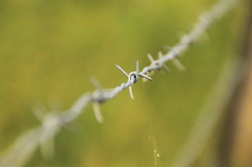 barbed wire barb wire