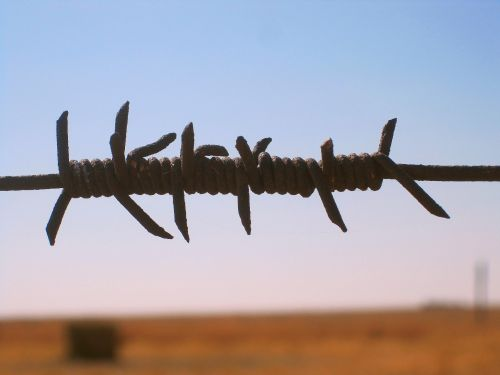 Barbed Wire Joined