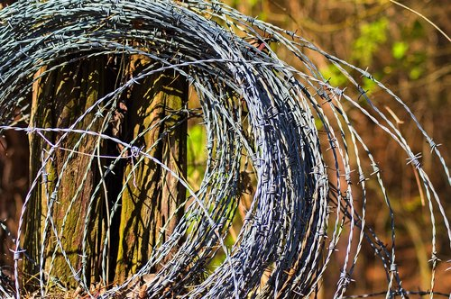 barbed wire roll  wire  barb
