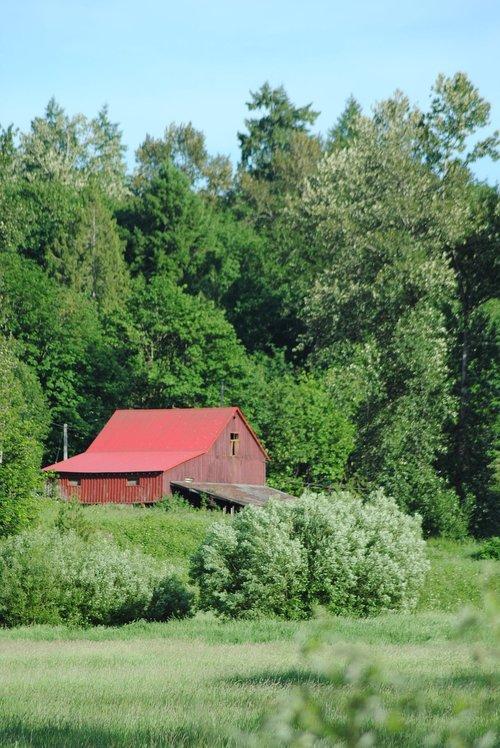 barn  farm  shed