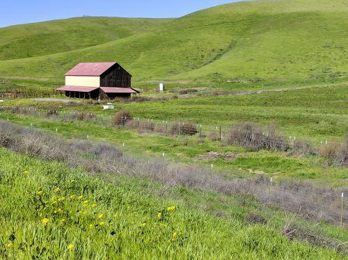 Barn In The Fields