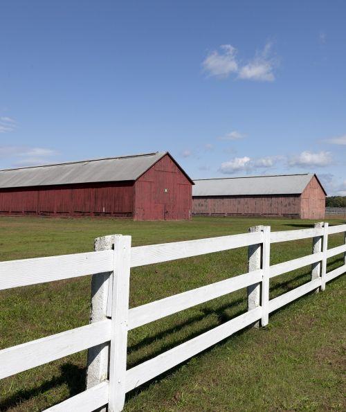barns tobacco fence