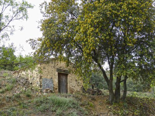 barraca cabin pastoral